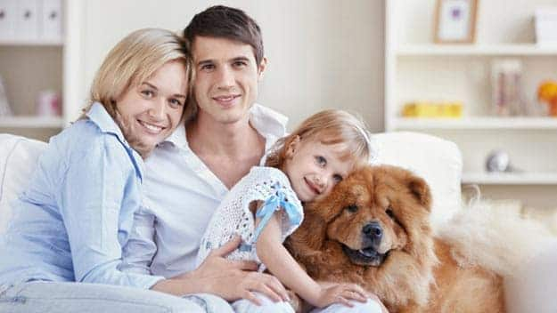 Wills & Trusts dog-young-family Direct Wills Datchet